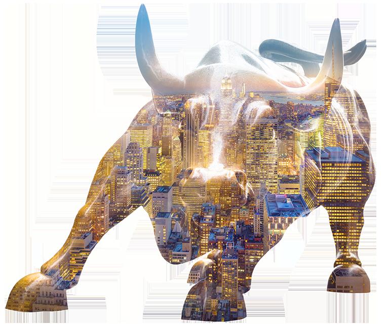 Wealth Management - Bull Market