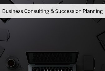 Business Consulting & Succession Planning